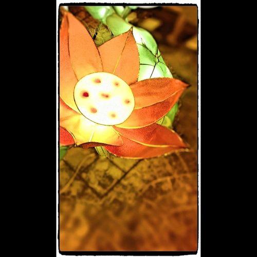 ใกล้เทศกาลถือศิลกินผักแล้วว!! บรรยากาศดีมาก ^o^ Seemorethailand Lovenokialumia Lumia520 Phuket ดอกไม้ Instargramthailand Picture Enjoylife