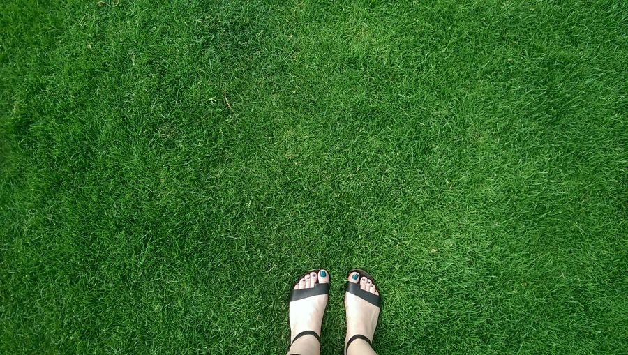 Low section of human legs on grass