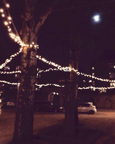💡💡💡 Lights 💡 Light Night Illuminated No People Sky Built Structure Architecture Street Lighting Equipment Tree