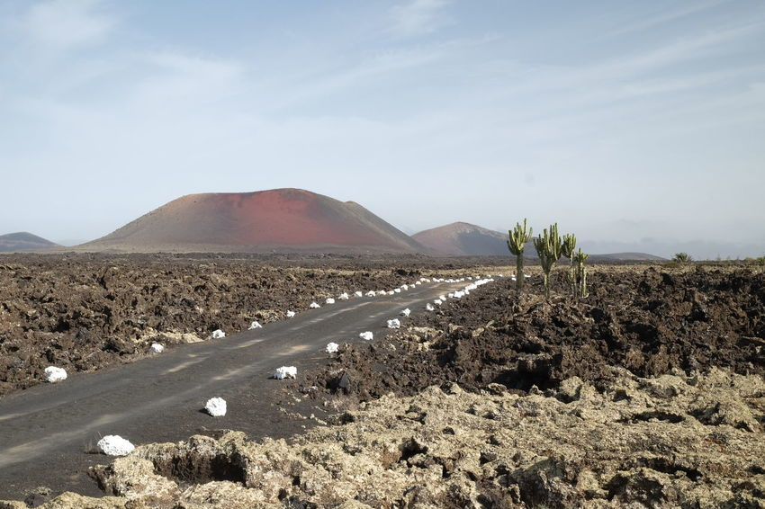 Lanzarote, Spain Cactus Desert Landscape_Collection Lanzarote Road SPAIN Arid Arid Climate Beauty In Nature Day Desert Landscape Landscape_photography Lava Mountain Nature No People Outdoors Scenics Stone Tranquil Scene Tranquility Volcanic Landscape Volcano