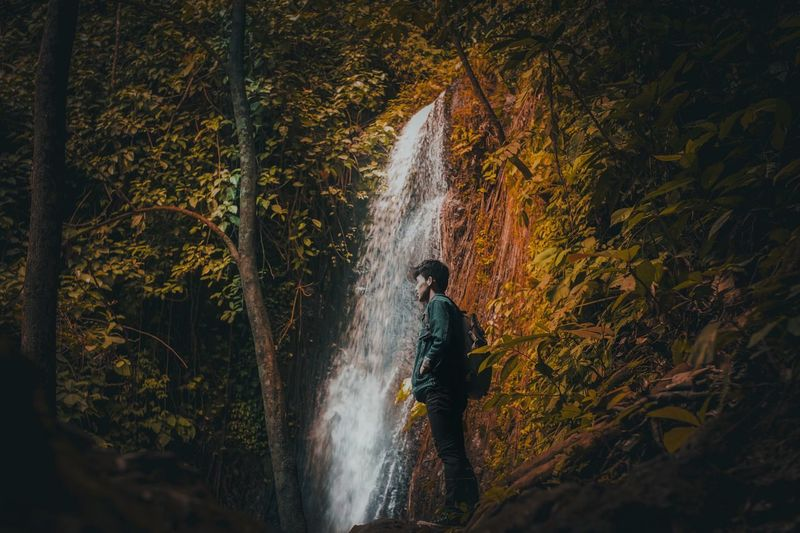 Man standing by waterfall at forest