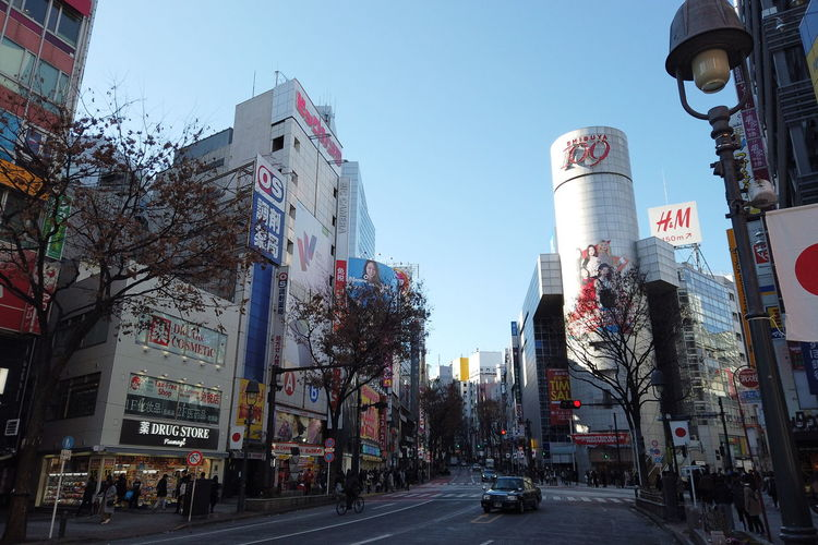 Urban Winter Street City Shibuya Tokyo Japan Architecture Building Exterior Built Structure Sky Building Transportation Road Tree Motor Vehicle Nature Clear Sky Mode Of Transportation Sign Office Building Exterior Land Vehicle City Life Day Car City Street Skyscraper Outdoors Light