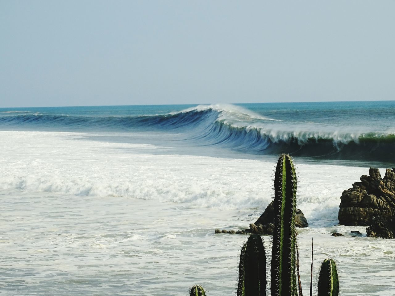 View of breaking wave