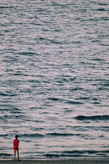 Rear view of girl standing in seashore