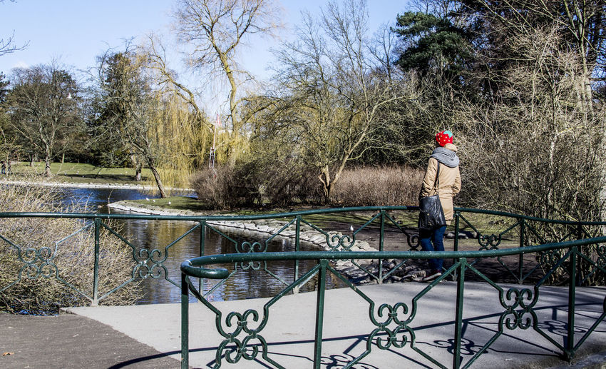Side view of man standing by railing against trees