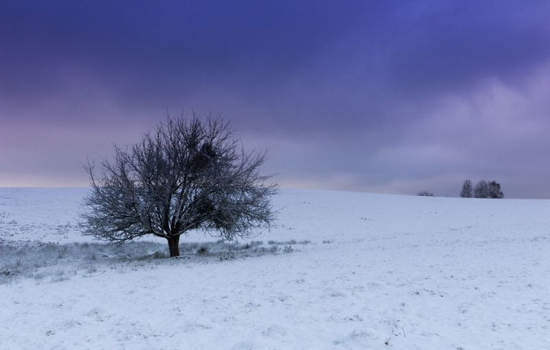 Winter is coming. ❄ Naturelovers Beautiful Relax Photooftheday Morning Countryside Photo Photography Canon Snow Home France Clouds Sky White Purple Colorful Cold Temperature Winter Nature Beauty In Nature Sky Outdoors Tree Landscape Blue Scenics Tranquil Scene Rural Scene No People