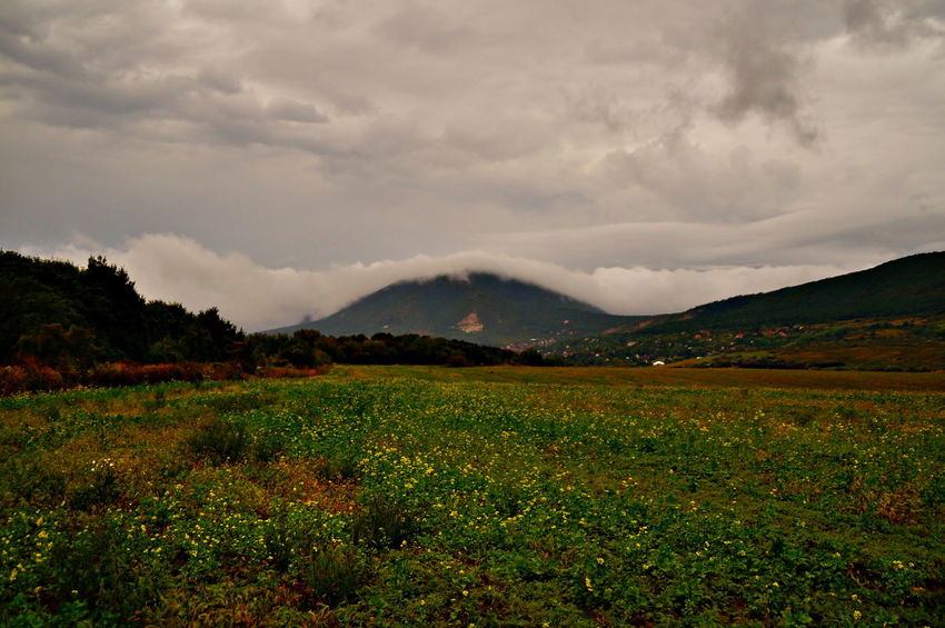 Mount Pilis has a cloud cap Field Rainy Days Beauty In Nature Cloud - Sky Clouds And Sky Covered Day Landscape Mountain Mountain Range Nature No People Outdoors Pilis Pilisszántó Scenics Sky Tranquility