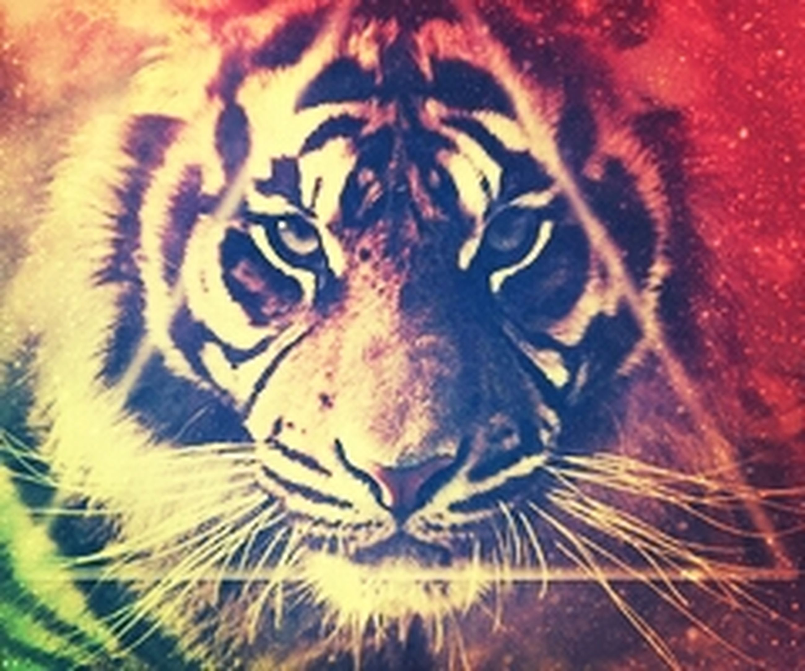 creativity, art and craft, art, animal themes, close-up, pattern, natural pattern, one animal, full frame, no people, animal markings, striped, backgrounds, wildlife, zebra, outdoors, design, animal body part, graffiti, animal head