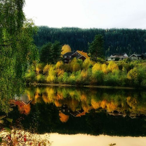 Autmn Reflection Outdoors River Water Beauty In Nature Landscape Autumn🍁🍁🍁 Houses By The Sea Tree Nature Sky