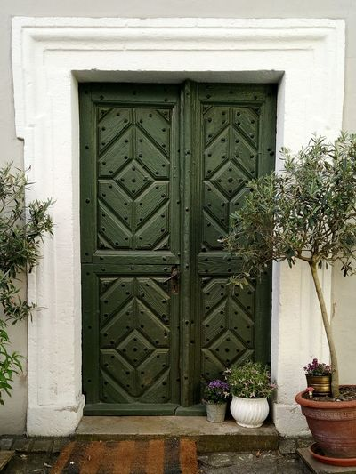 Door Architecture Built Structure Close-up Building Exterior Plant Closed Closed Door Entry Front Door