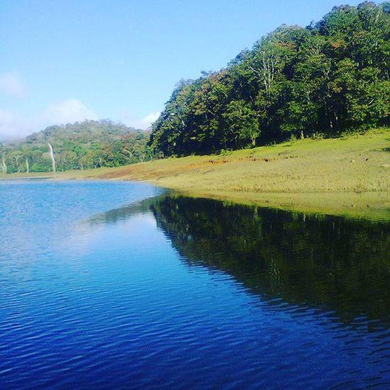 Hope this journey never ends....wanna live that life again....heaven on earth Kerala wildlife park.....periyar Mycreativefeed MyShoeboxOfPhotographs Lake Periyar kerala kereladiaries