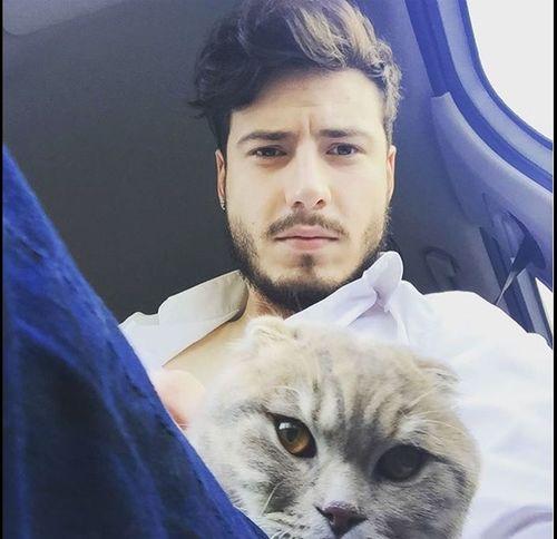 Cat Kedi Me Ben Smile Happy Mutlu  Bakış kediciğimle 😊