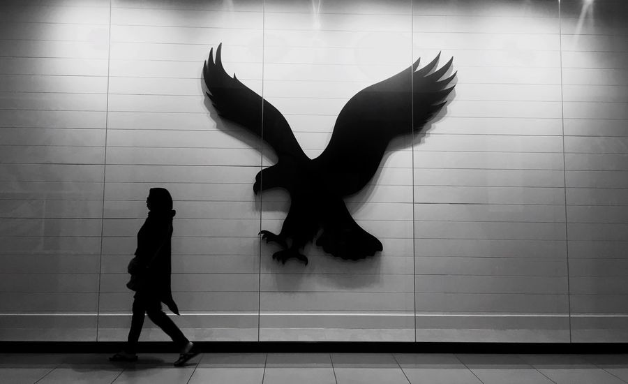 Indoors  Full Length Animal Representation One Person Real People Standing Day People Girl Adult Walking Street EyeEm Gallery Blackandwhite Iphonephotography HEAD Scalf White Eagle