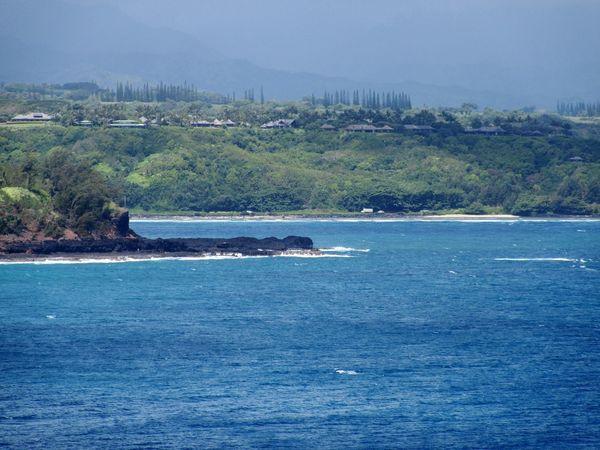 Tree Sea Water Beach Sky Rocky Coastline Calm Seascape Coastline Ocean Coast Shore Tide Tranquil Scene Pinaceae