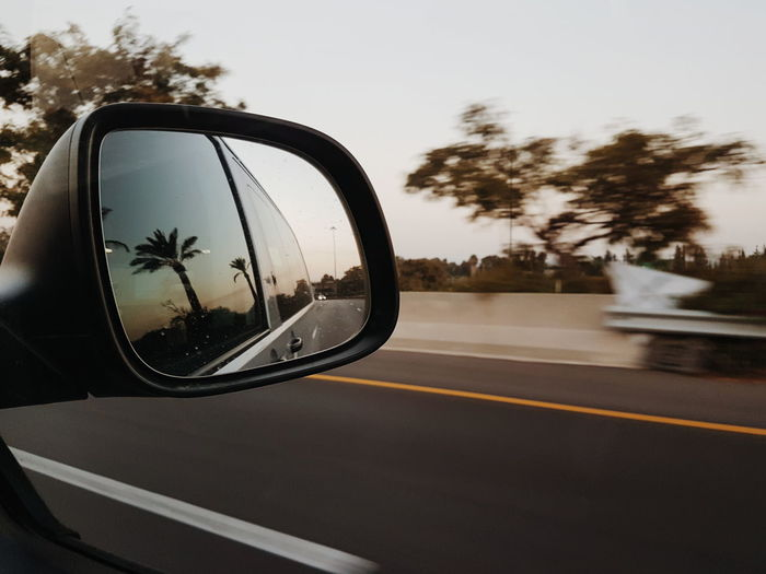 Highway to Ramallah, Palestine. Tree Road Mirror Car Street Transportation Reflection Road Trip Driving Motion Day Sky Outdoors No People City Nature Close-up Travelphotography Nature VSCO Vscocam