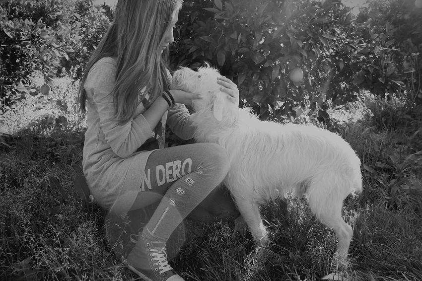 Meeee ! ✌ MEEEEEE!!! :) Me Yop  Yooo Yo Old Pic  Old Picture Old Pic:) Oldpicture Oldpic Oldphoto Dog Dog Love Dog❤ Perro Perrito Blanco Perro Blanco Whitedog White Dog Nature Nature_collection Nature Photography Naturelovers