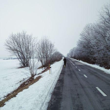 Tree Snow Cold Temperature Winter Nature The Way Forward Day EyeEmNewHere Girl Running Field Road Runner Running Free Runningwild