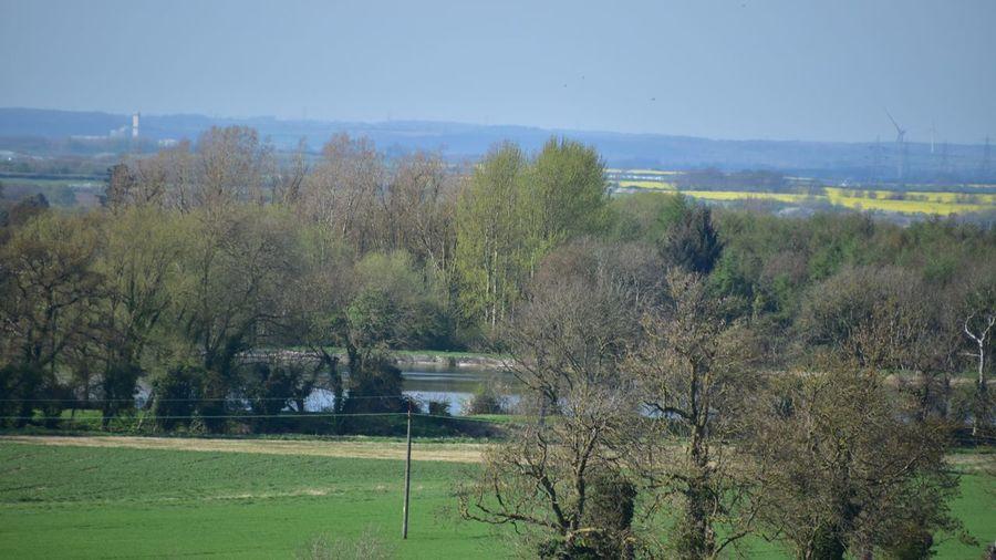 Taking Photos Landscape Harlaxton Trees Fields Nikon D5500