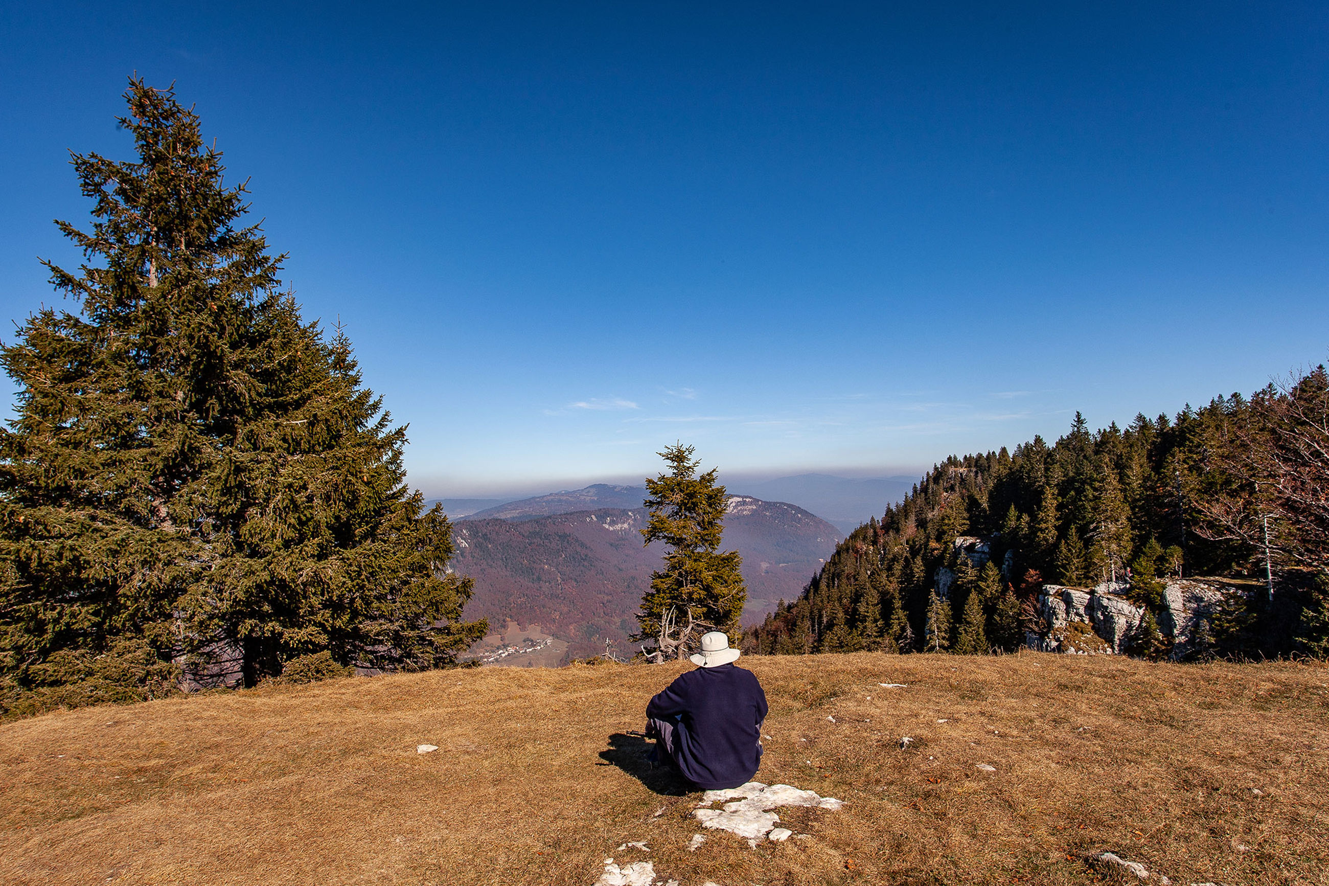 tree, plant, sky, real people, mountain, sitting, one person, leisure activity, scenics - nature, beauty in nature, tranquility, nature, non-urban scene, tranquil scene, rear view, lifestyles, environment, men, landscape, outdoors