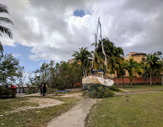 Sailboat washed up on shore after Hurricane Irma Cloud - Sky Outdoors Storm Cloud Palm Tree Tree Hurricane Irma 2017 Storm Surge Storm Surge Damage Storm Damage