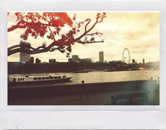 Tamigi Londonlife Afternoon Summertime Londoeye London City Urban Urban Photography Enjoying Life Building London Eye Relaxing Filter Vintage Photo Palace Building And Sky Urban Architecture Vintage Style Polaroid Summer Vintage Taking Photos First Eyeem Photo View