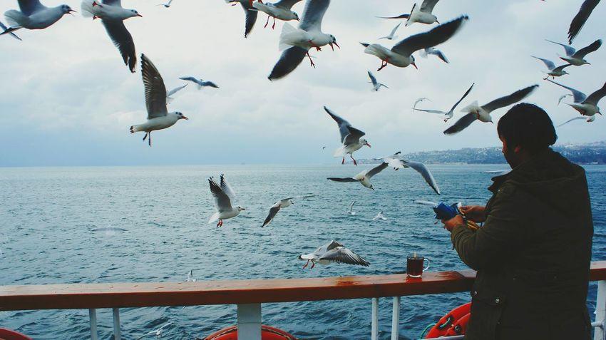 Everyday Joy Happiness Turkey Istanbul ❤