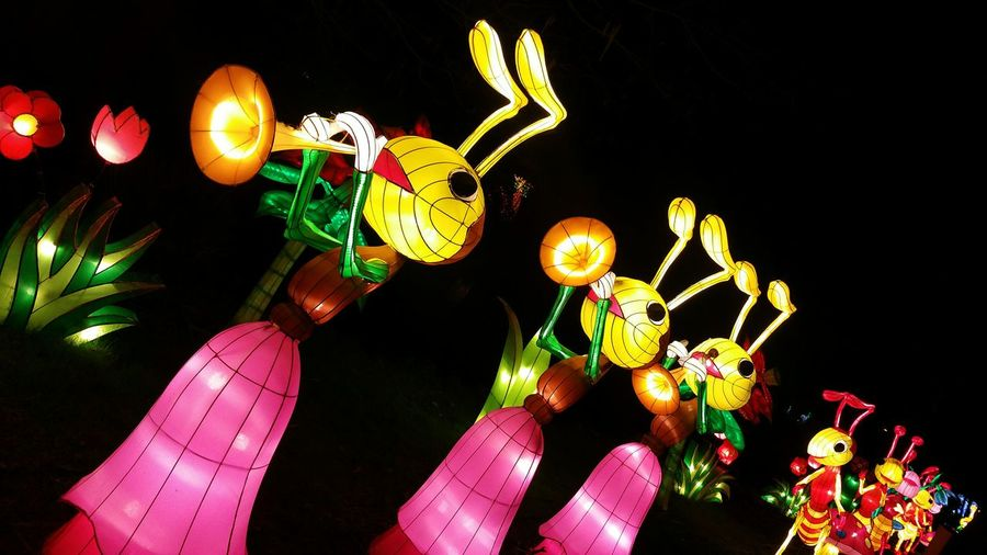 Insect Lanterns Lantern Festival Lantern Festival London Learn & Shoot: After Dark Chinese Lantern Festival Light Up Your Life Getting Inspired Lights In The Dark Lanterns Life Life Of Lanterns Lantern Exhibition Lantern Show Magical Lanterns Lanterns In The Dark Light In The Darkness Fantastic Exhibition The Rise Of Nature