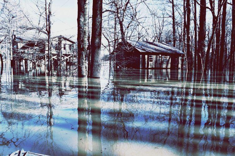 Mississippi River Mississippi River Flood Reflections Cabin Nature Photography River Flood Rustic Nature Water Reflections Calm Water