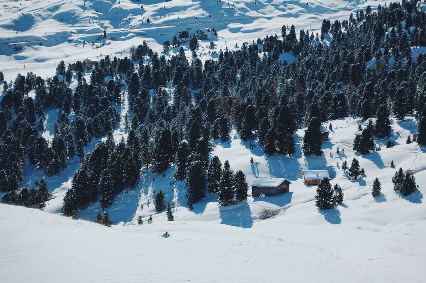 Italian Dolomites in Winter , Alta Badia, Colfosco Alta Badia Beauty In Nature Blue Sky Cold Cold Temperature Colfosco Day Eaurope Freezing Italy Leisure Mountain Mountains Nature Outdoors Powder Scenics Ski Lift Skiing Snow Snowboarding Tranquility Tranquility Travel Winter