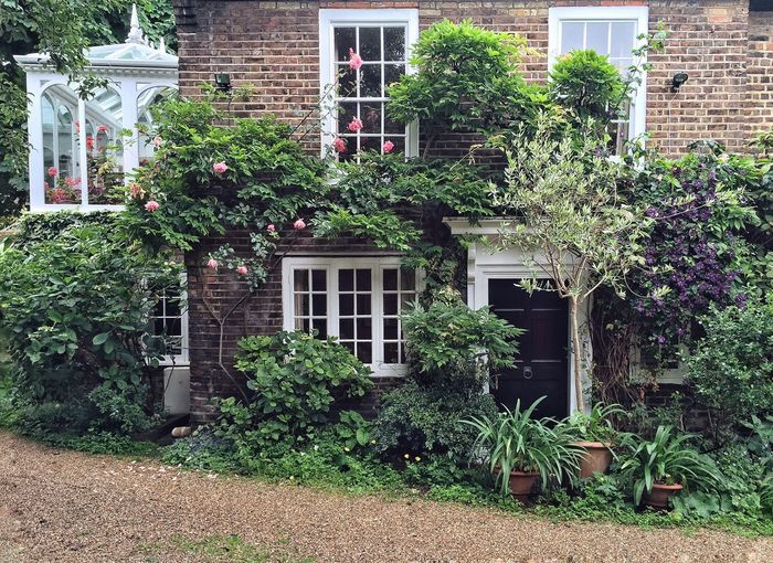 Lovely home in London English Plants And Flowers Travel Photography Naturelovers