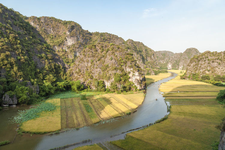 Tam Coc Bich Dong - beautiful rice valley in Ninh Binh Province, Vietnam Bai Dinh Church Ninh Bình Rice Rice Paddy Tam Coc Tours Travel Traveling UNESCO World Heritage Site Viet Nam Vietnam Vietnamese Food Ariel View Beauty In Nature Famous Place Hanoi Vietnam  Karst Mountain Ninh Binh Tour Ninh Binh, Vietnam Rice Field River Tamcoc-bichdong-ninhbinh Trang An Valley Vietnam Trip Yellow