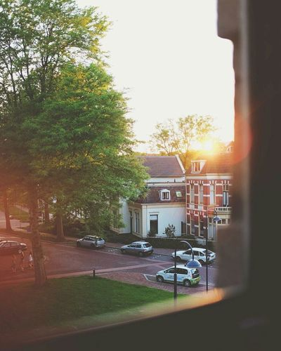 Window Architecture Built Structure Building Exterior Sunlight City Tree Outdoors Day Sunset Netherlands Room Neighborhood Afternoon Calm Relaxed Summer Peek Peeking Hiding Hiding From The World