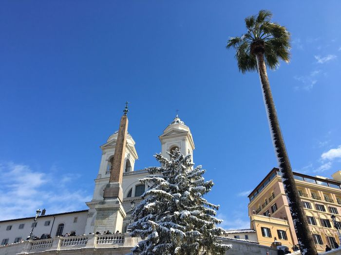 Spanish steps with snow Snow Spanish Steps Rome Italy Palm Tree Low Angle View Architecture Tree Sky Building Exterior Built Structure Day Cloud - Sky Travel Destinations No People Outdoors