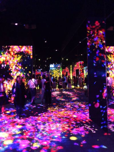 Night Illuminated Celebration Decoration Multi Colored Lighting Equipment Christmas Light