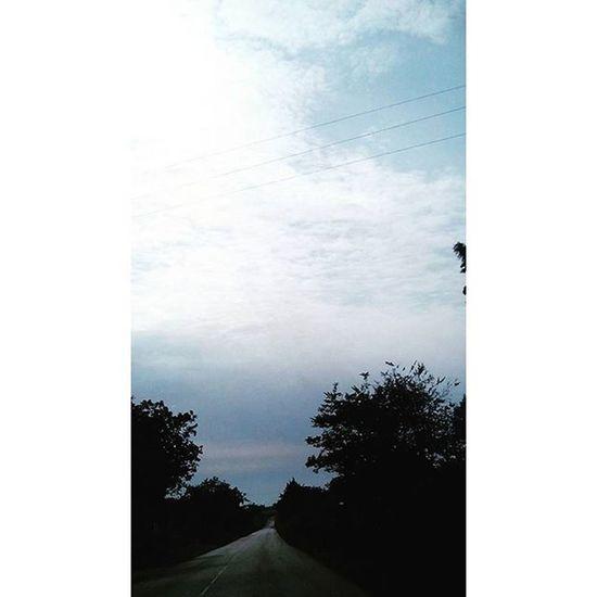 """""""Ogni tempesta ha una sua fine. Una volta che tutti gli alberi sono stati sradicati, una volta che tutte le case sono state demolite, il vento si calmerà, le nuvole se ne andranno, la pioggia si fermerà, il cielo si schiarirà in un istante. E solo allora, in quei momenti di quiete dopo la tempesta, capiamo chi è stato abbastanza forte da sopravvivere."""" Snapchat Nocrop Juno Filter Tempesta Tumblr Alberi Tree Case Vento Nuvole Pioggia Istante Abbastanzaforte Forte Sopravvivere Sopravvivenza Vita Life Strada Vía L4l F4F Images Pic picoftheday photo ph photooftheday"""