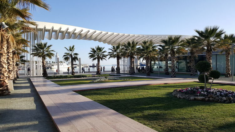 Malaga Malagacity Spain ✈️🇪🇸 SPAIN