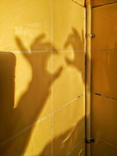 Shadows Shadowplay Shadow Play Shadow Fight Shadow Figures Yellow Mellow Yellow Fresh On Eyeem  Imagination Imagine Yellow Tiles shadow fight Shadow Fight Kidd Fun Fun Colour Of Life Color Palette The Magic Mission Sim Sala Bim Alakazam TakeoverContrast