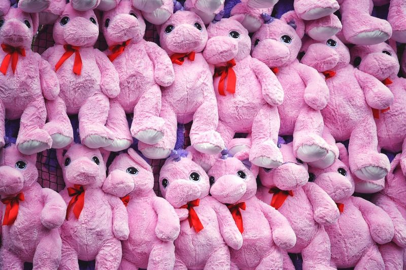 Beautifully Organized Large Group Of Objects Full Frame Backgrounds For Sale No People Close-up Multi Colored Pink Fluffy Unicorn Prices Pluche