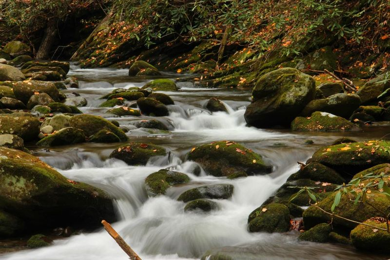 Fall Stream Fall Beauty Fall Colors Fall Color Fall Fall Ll Long Exposure Smk Smokey Mountains Stream Stream - Flowing Water