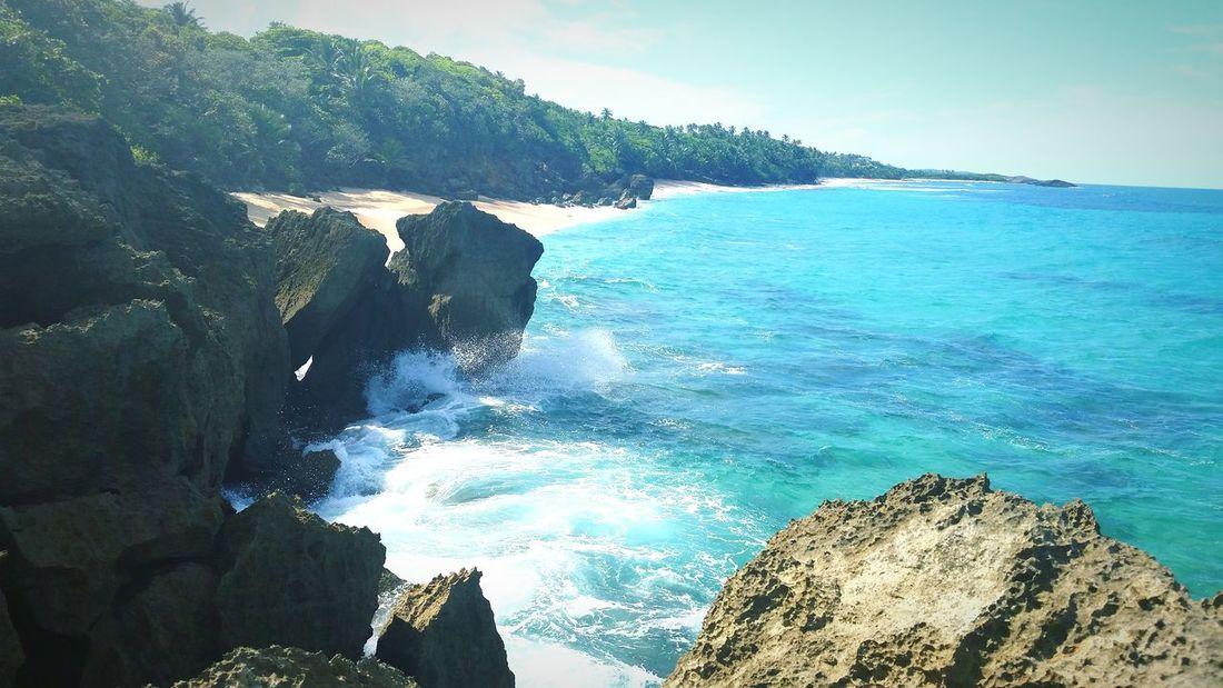 Paradise Beach Puerto Rico Creation Nature