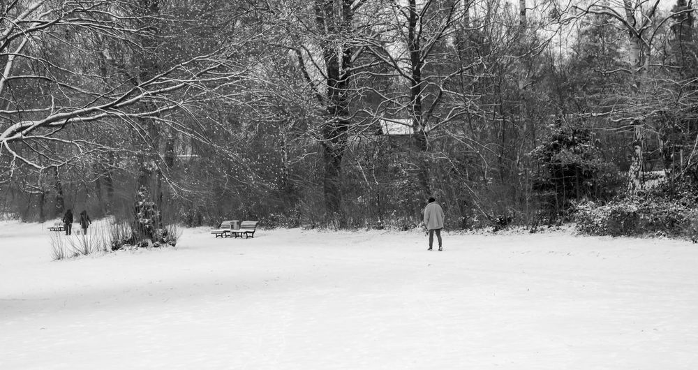 Adult Adults Only Bare Tree Beauty In Nature Berlin Photography Berliner Ansichten Black And White Branch Cold Temperature Day Full Length Men Nature One Person Only Men Outdoors Park People Real People Snow Snowing Tree Weather Winter Zehlendorf Shades Of Winter