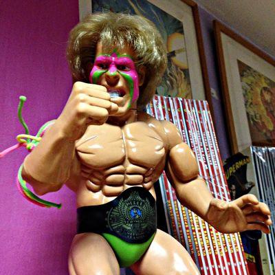 Maria Teresa Campos' Wrestlemania ! Toys Bad Hair Day Kitsch