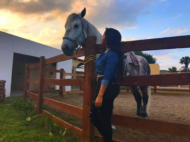 Pokemon 🐎 Horse Photography  Me :)  Sol Mexico Monterrey, México Caballos 🐎🐎👢