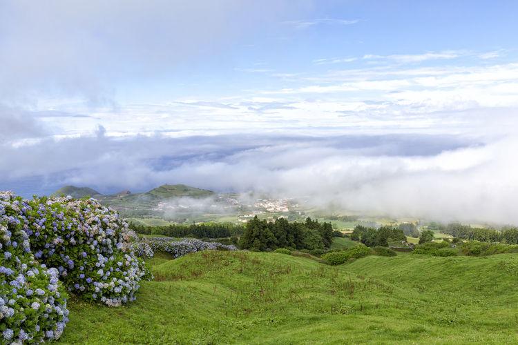 Morning fog over the town of Varzea in the island of Sao Miguel. Sao Miguel Azores Açores Sete Cidades Hike Trek Trail Landscape Caldera Crater Lagoa Azul Verde Seca Alferes Flowers Hydrangea Ginetes Varzea Clouds Fog Travel Tourism Destination
