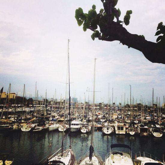 Sea Barcelona, Spain Port