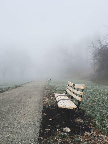 Fog Foggy Dawn Bench Mystery