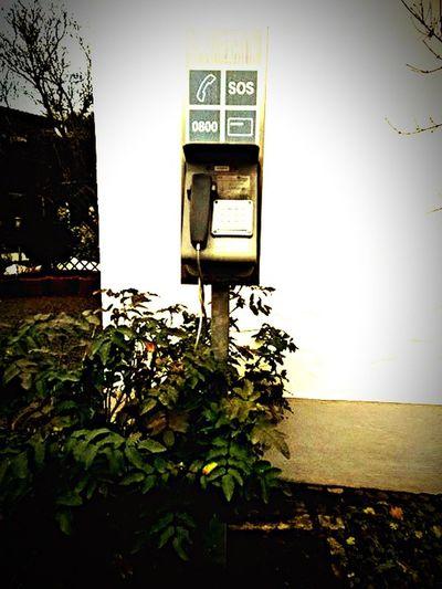 Hanging Out Taking Photos Deutschland Germany Wandern Hiking Public Telephone Telefonzelle