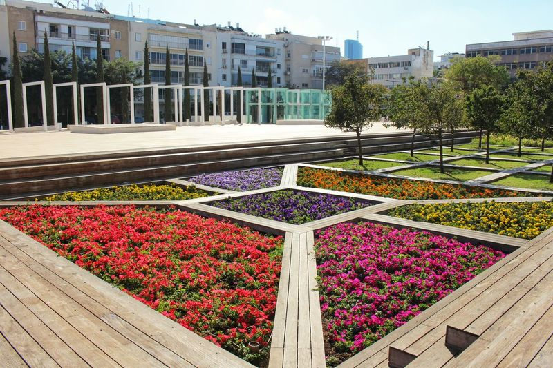City Life Gardening Habima Square Architecture Arrangement Beauty In Nature Building Exterior Built Structure City Day Flower Fragility Freshness Growth Israel Nature No People Outdoors Park Plant Relax Sky Sunshine Tel Aviv Tree