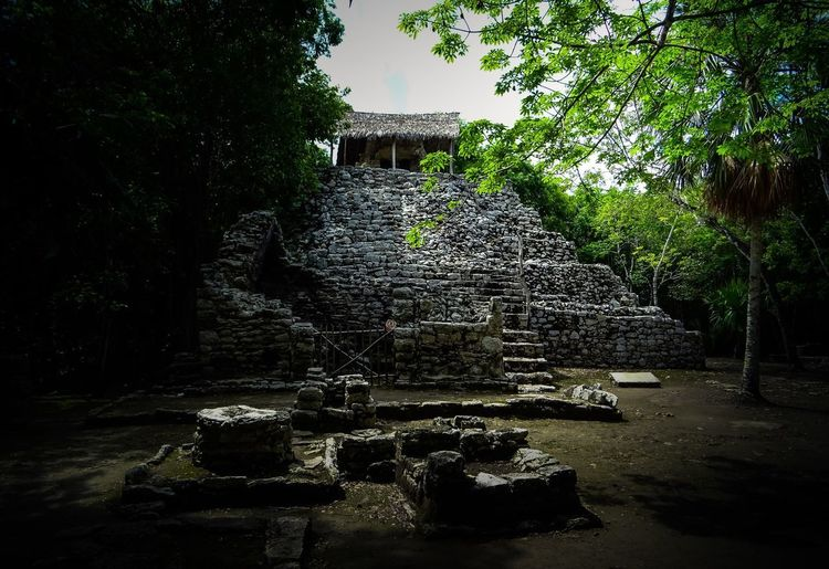 Chichen Itza Coba Tree Plant Water Nature Growth No People This Is Latin America Architecture Day Built Structure Outdoors Building Exterior Tranquility