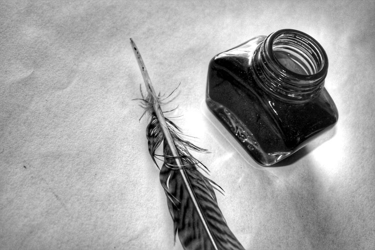 Close-up of feather with ink in bottle on table